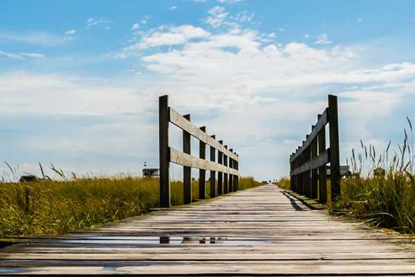 Brücken bauen Zukunft Natur im Coaching und Training in Hamburg und Hannover